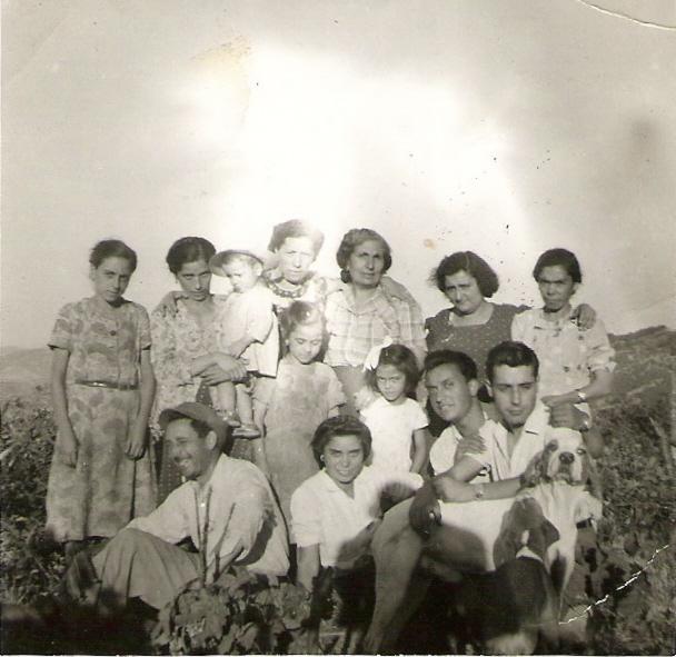 cucco-1952.jpg
